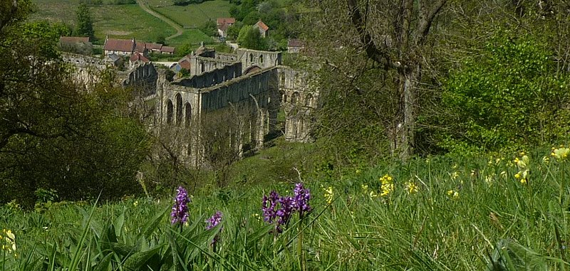 View of Rievaulx Abbey