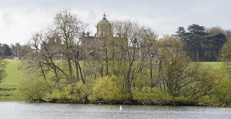 View of Castle Howard with cormorant colony